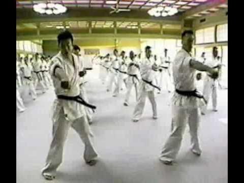 Kyokushin Karate - Best Technique (King of Technic) Part III