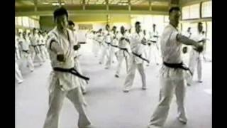 Part 3 of Best Technique (King of Technic) instructional kyokushin ...