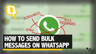 How to Send Bulk WhatsApp Messages | The Quint screenshot 5