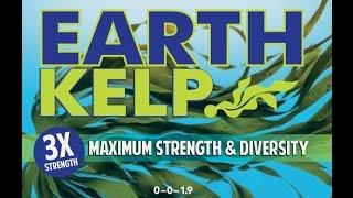 Earth Kelp | Cold Pressed Liquid Kelp + Sea Minerals