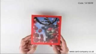 3D Christmas 1A190
