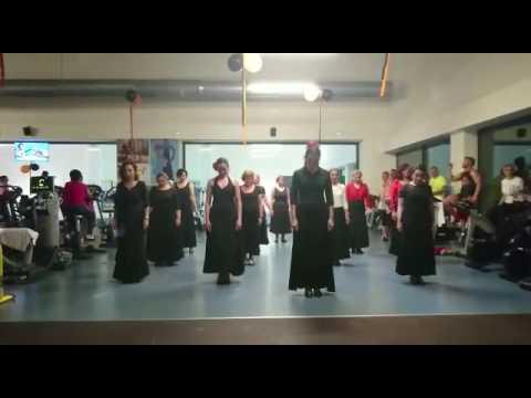 Exhibición flamenco go fit