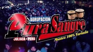 AGRUPACION PURA SANGRE - MENTIRAS  ( En vivo  2017 )