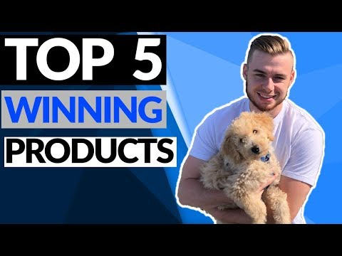 Top 5 WINNING Products In September 2019   Shopify Product Research thumbnail