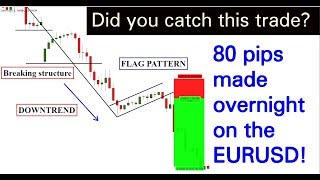 Forex: Did you CATCH this TRADE? 80 pips EURUSD overnight..