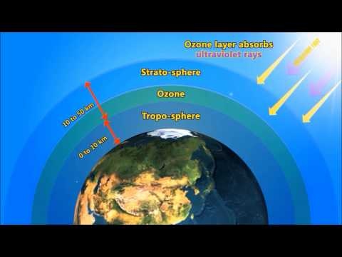 Ozone Hole  Video for Kids