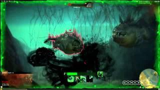 Guild Wars 2 - Underwater Combat - Gameplay (PC)