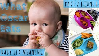 7 LUNCH IDEAS| Baby Led Weaning