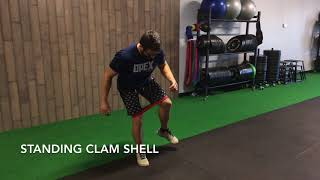 Standing Clam Shell