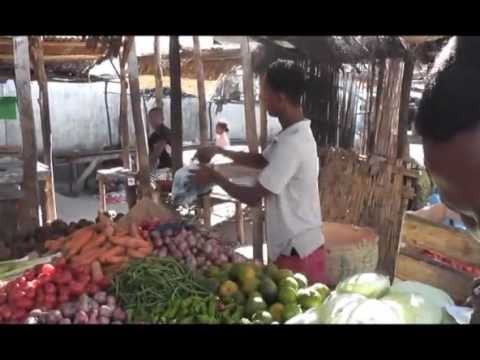 A visit of the market of Mahabo (Madagascar)