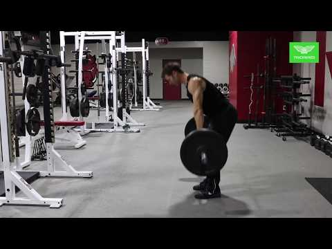 WEIGHT LIFTING - Clean Pull