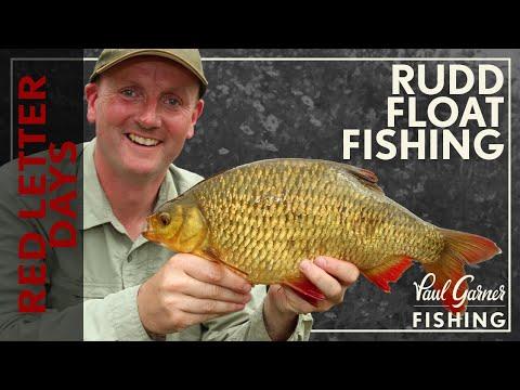 Rudd Fishing : Float Fishing For Rudd