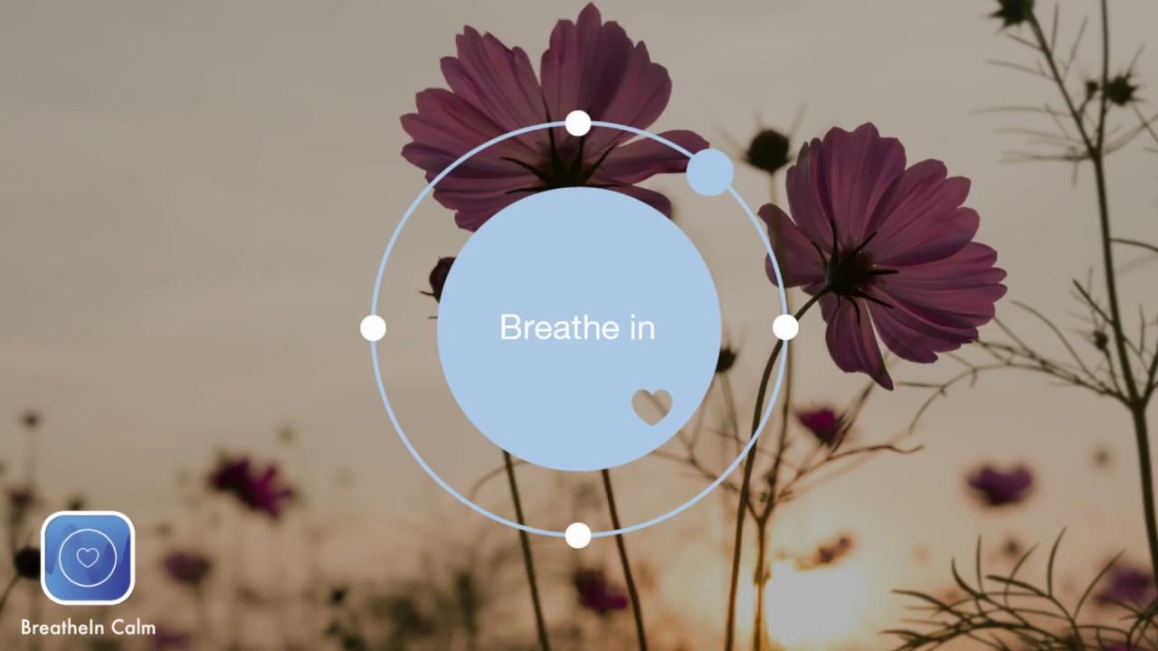 2 min Breathe Bubble |  Breathe Exercises - Flower I Think Nothing Exercise I Breathe In Calm App