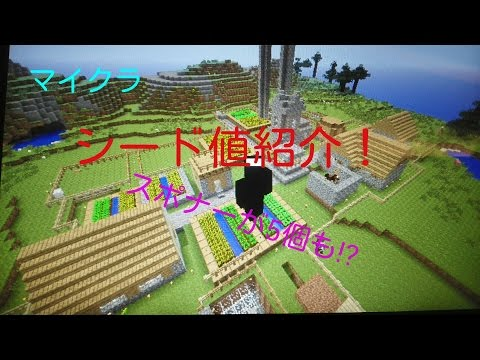 【マイクラ】シード値紹介!~スポナー5個!?~バイオームもいい!?~【VITA・PS3対応】
