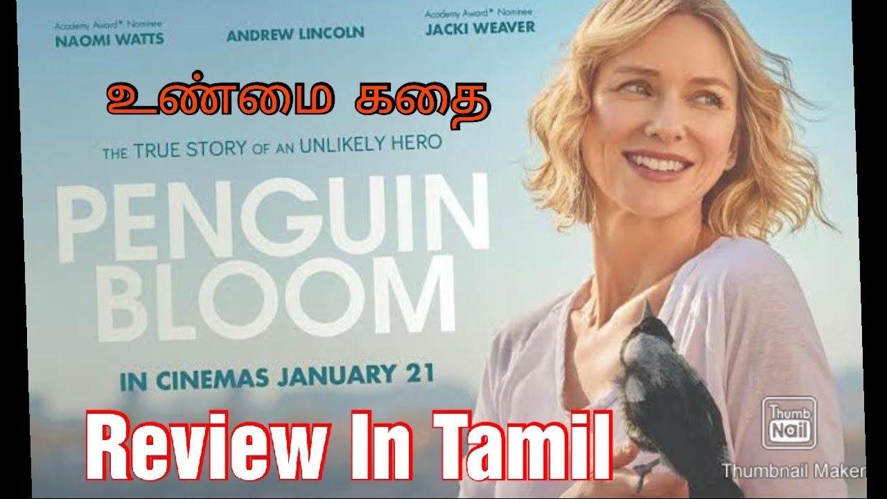 Penguin Bloom 2021 Netflix Movie Review In Tamil.Glendyn ...