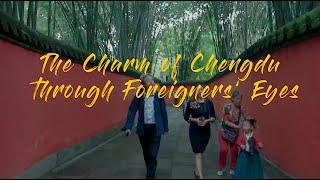成都真的宜居吗?(9)为什么这些外国人对成都念念不忘?成都到底有什么魅力?|Chengdu Plus