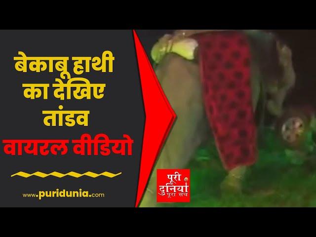 UP | शादी समारोह में पालतू हाथी ने जमकर किया तांडव जान बचाने दौड़ा दूल्हा | Viral Video
