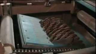 видео Многопильные станки