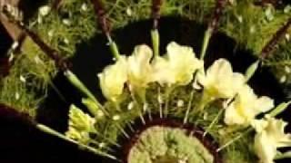 flower61ru(Вы хотите подарить себе праздник? Лучший праздник - модная фотосессия! «Принцессы цветов» приглашают вас..., 2009-12-28T08:30:27.000Z)