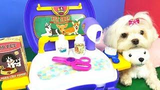 Suki Leva Sua Filhote Para Banho No Pet Shop Com Tia Fla Toy Cake