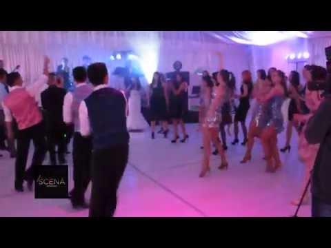 Disco si Salsa | Dansatori Nunta | Restaurant Magic Pitesti