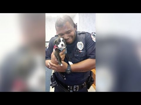 Cop Responding To a Call at an Animal Shelter Walks Out With A New Pet