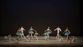 Selections From La Bayadere