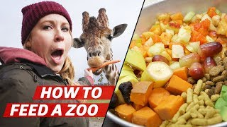 What It Takes to Feed Over 3000 Animals a Day at the San Diego Zoo Safari Park — How to Make It