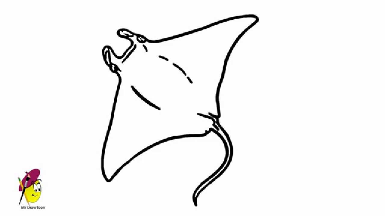 stingray - easy drawing - how to draw a stingray