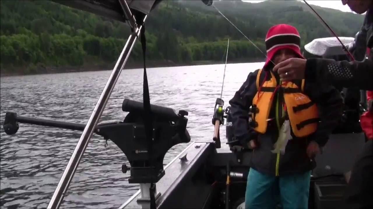 Riffe lake kokanee