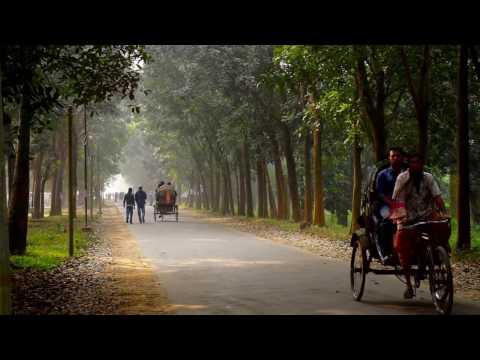 Beauty Of Jahangirnagar University ( জাহাঙ্গীরনগর বিশ্ববিদ্যালয়  )