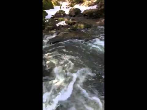 Rancho Relaxo Falls Spring 2016 - I