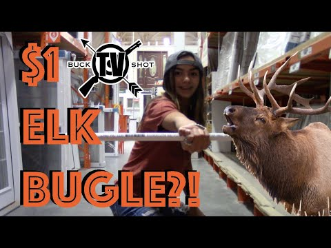 How to Make An Elk Bugle