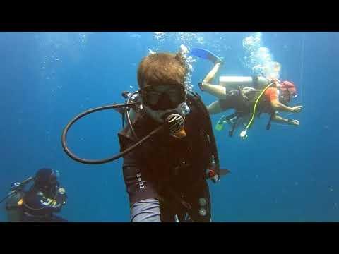 Borneo adventure: Kota Kinabalu Scuba Diving 2018 in 240fps