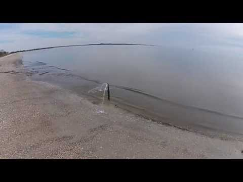 Raccoon Key Drone Flight HD