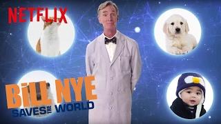 Bill Nye Explains: Fuller House | Netflix