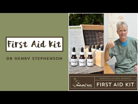 First Aid Kit - Dr Henry Stephenson