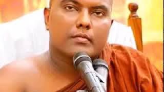 සාරිපුත්ත, බක්කුල මහා රහතන් වහන්සේලා පිළිබඳ අසිරිමත් කථා Ven Galigamuwe Gnanadeepa Thero  22-07-2018