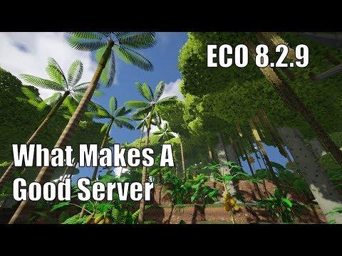 ECO 8.2.9 - What Makes a Good Server