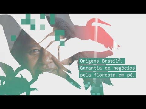 Origens Brasil: Garantia de negócios pela Floresta em Pé