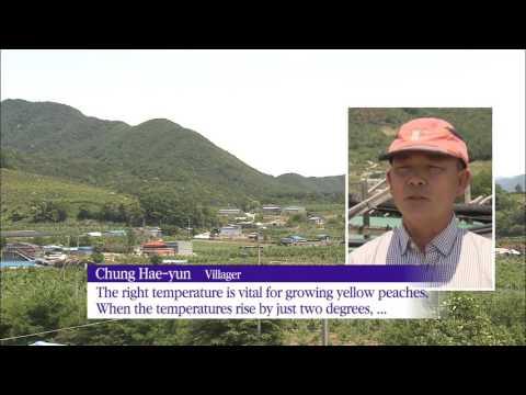 Solar Power & Agriculture