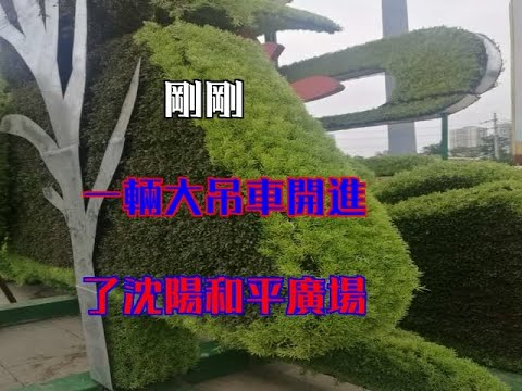 剛剛,一輛大吊車開進了瀋陽和平廣場