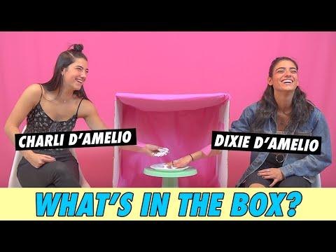 charli-vs-dixie-d'amelio---what's-in-the-box?