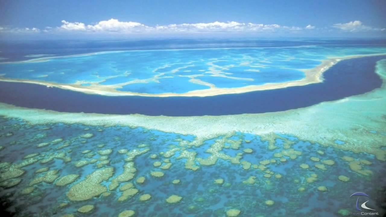 Resultado de imagen para La Gran Barrera de coral
