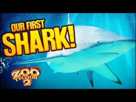 Zoo Tycoon 2: The Aquarium   REEF SHARKS & WOBBEGONGS (Aquarium Part 6)
