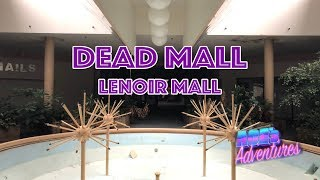 My video tour of the long closed Lenoir Mall Thanks to Sky City Blo...
