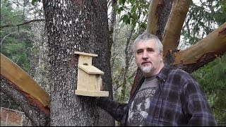 How To Build A Bird House Bird Feeder Easy And Inexpensive