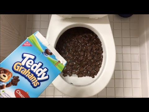 Will it Flush? - Teddy Grahams