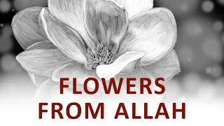 The Beginning and the End with Omar Suleiman: Flowers from Allah (Ep16 )