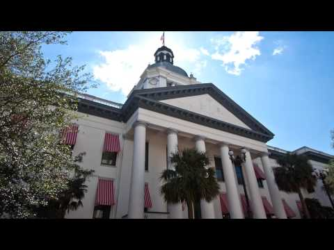 Orlando Florida Forensic Accountant | Certified Fraud Examiner | Paulette Smith CPA